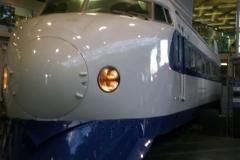 DSCN2981